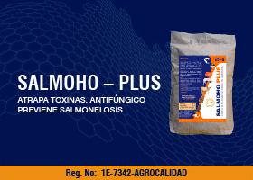 SALMOHO – PLUS